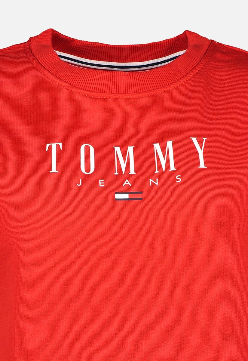 Tommy Jeans DW0DW09918 Logo Sweater