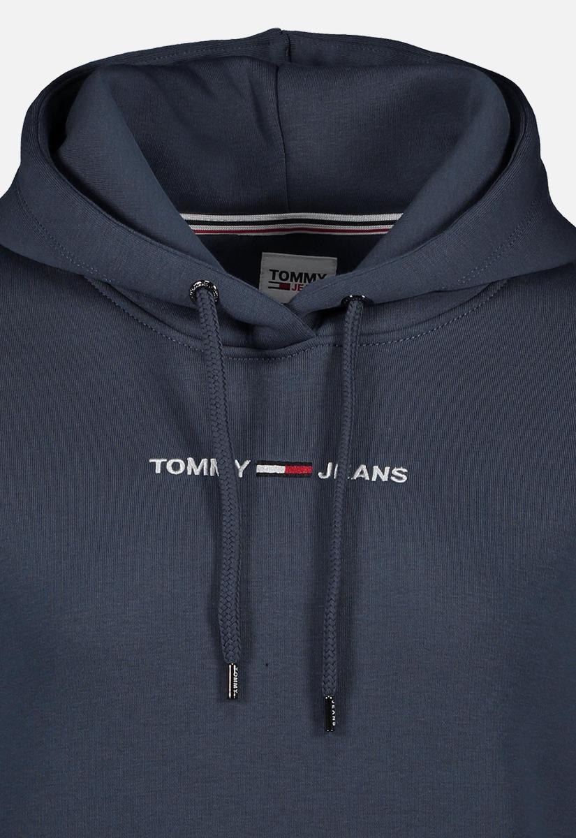 Tommy Jeans DW0DW10132 Logo Hoodie 2